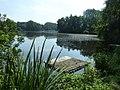 Am Ufer des De-Witt Sees im Nettetal - geo.hlipp.de - 20701.jpg