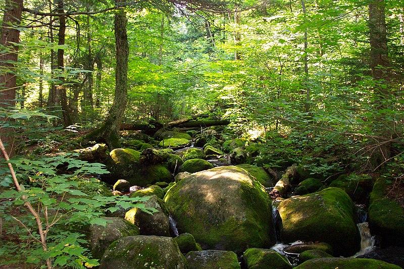 File:Ampersand Adirondacks NJ USA.JPG