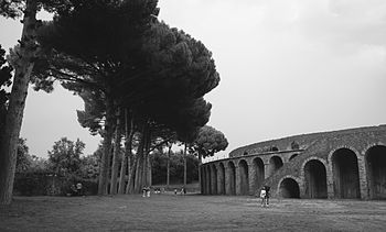 Anfiteatro romano degli Scavi di Pompei.jpg