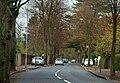 Annadale Avenue, Belfast - geograph.org.uk - 1574917.jpg