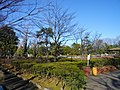Arakawa Nature Park.JPG