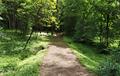 Arboretum. Horki, Belarus.png