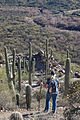 Arizona NST (9420028420).jpg
