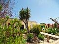 Armona Island (Portugal) - 49707135383.jpg