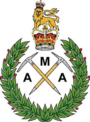 Army Mountaineering Association - Image: Army Mountaineering Association colour