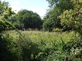 Aslacton Parish Land - Image: Aslacton Parish Land 1