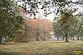 Autumn (8258180378).jpg