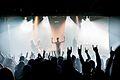 Avernal - Roxy Live.jpg