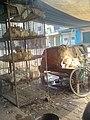 Awais Chicken Shop7 - panoramio.jpg
