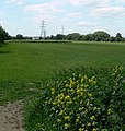 Aylestone Playing Fields - geograph.org.uk - 441778.jpg