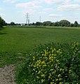 Aylestone Playing Fields - geograph.org.uk - 441778.jpg