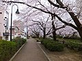 Azumicho, Toyama, Toyama Prefecture 930-0094, Japan - panoramio (1).jpg