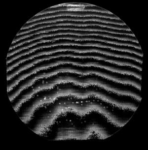 Eutectic bonding - Image: B e ultrasonicimageofbla nkeutecticwafer