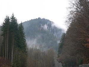 Bad Teinach-Zavelstein - Pine Forest Surrounding Bad Teinach