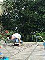 Balanceboarding.JPG