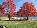 Bald Eagle State Park, Pennsylvania Fall Beach.JPG