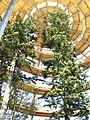 Baumturm von Innen.jpg