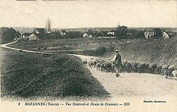 Bazarnes-CP-02.jpg