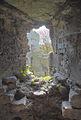 Beaumaris Castle (HDR) (8074250088).jpg
