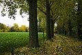 Belgium in de Vlaanders (22768693111).jpg