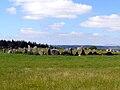 Beltany stone circle.jpg