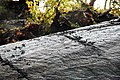 Bergkunst funnet ved arkeologiske undersøkelser på Huseby i Stjørdal.jpg