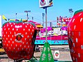 Berry Go Round - panoramio.jpg