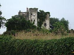 Beyrie-sur-Joyeuse (Pyr-Atl, Fr) Le château à restaurer.JPG