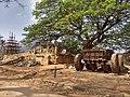 Bhoga Nandishwara Temple tree.jpg