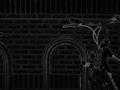 Bikesgray-costella.png
