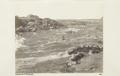 Bild från familjen von Hallwyls resa genom Egypten och Sudan, 5 november 1900 – 29 mars 1901 - Hallwylska museet - 91760.tif