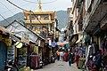 BirG086-Dharamsala.jpg