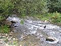 Bistarska reka9.JPG