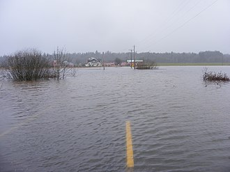 Black River (Chehalis River) - Flooding on the Black River