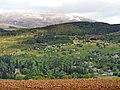 Blackmuir Wood - panoramio (4).jpg