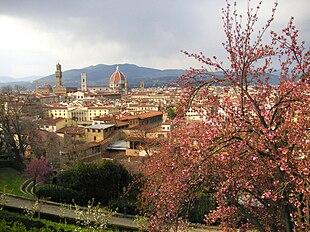 Firenze velocità datazione