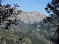 Blick zum Puig Major.jpg