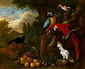 Bogdáni, Jakob - Two Macaws, a Cockatoo and a Jay, with Fruit - Google Art Project.jpg