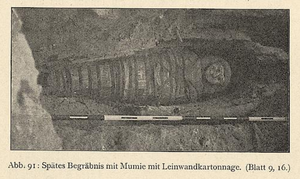 photograph of a mummy