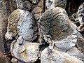 Borobudur - Divyavadana - 082 N, The Sky rains down Jewels (detail 1) (11706237184).jpg