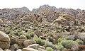 Boulder field at Rattlesnake Canyon (16397456979).jpg