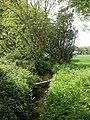 Bransgore, stream - geograph.org.uk - 1296796.jpg
