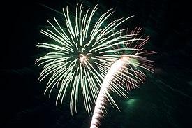 Bray Fireworks (6848286024)