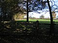 Bretton Wood - geograph.org.uk - 281201.jpg