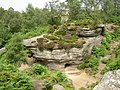 Brimham Rocks from Flickr M 10.jpg