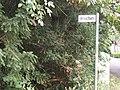 Broichen Straßenschild.jpg