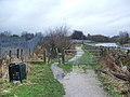Bronte Way - geograph.org.uk - 680169.jpg