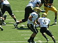 Buffaloes on offense at Colorado at Cal 2010-09-11 6.JPG