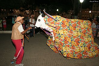 Bumba Meu Boi - Typical costume for the bull character