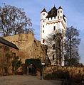 Burg Eltville am Rhein.jpg